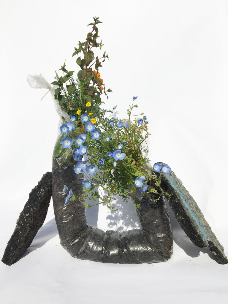 Alicia Escott (California), Collaborations with Wildflower Seeds: Metabolic Rifts and Domestic interiors, 2020, found plastic, soil, wildflower seeds, water, life force, NFS