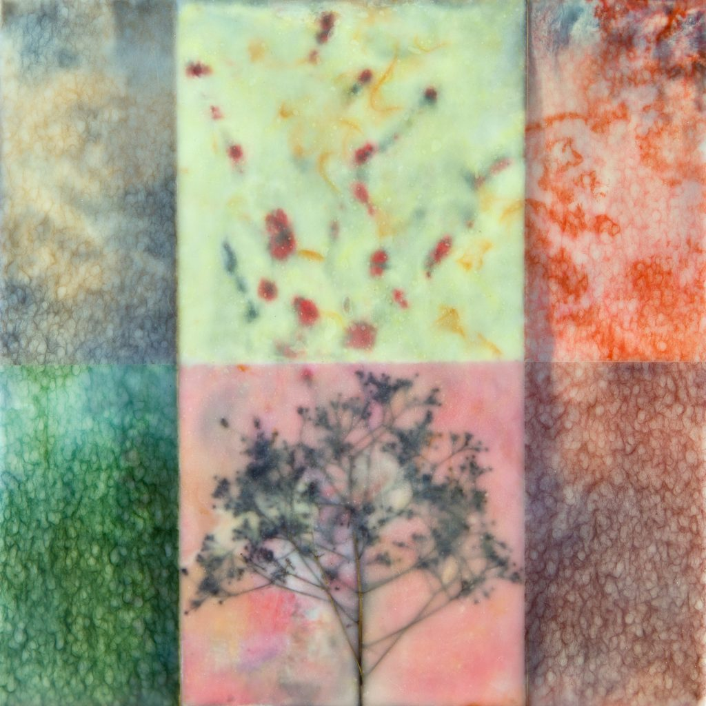 Lauren Eisen (Colorado), Containment, encaustic, paper, grasses, smokebush on wood panel,  12 x 12 inches, NFS