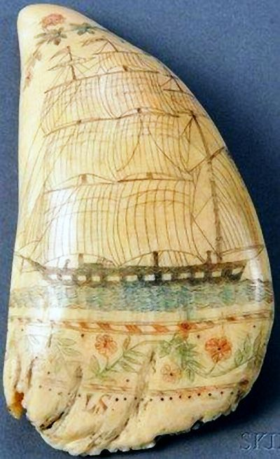 """Scrimshaw, 1867, Sperm Whale Tooth, 6 in x 3 1/2 in x 1 3/4"""""""