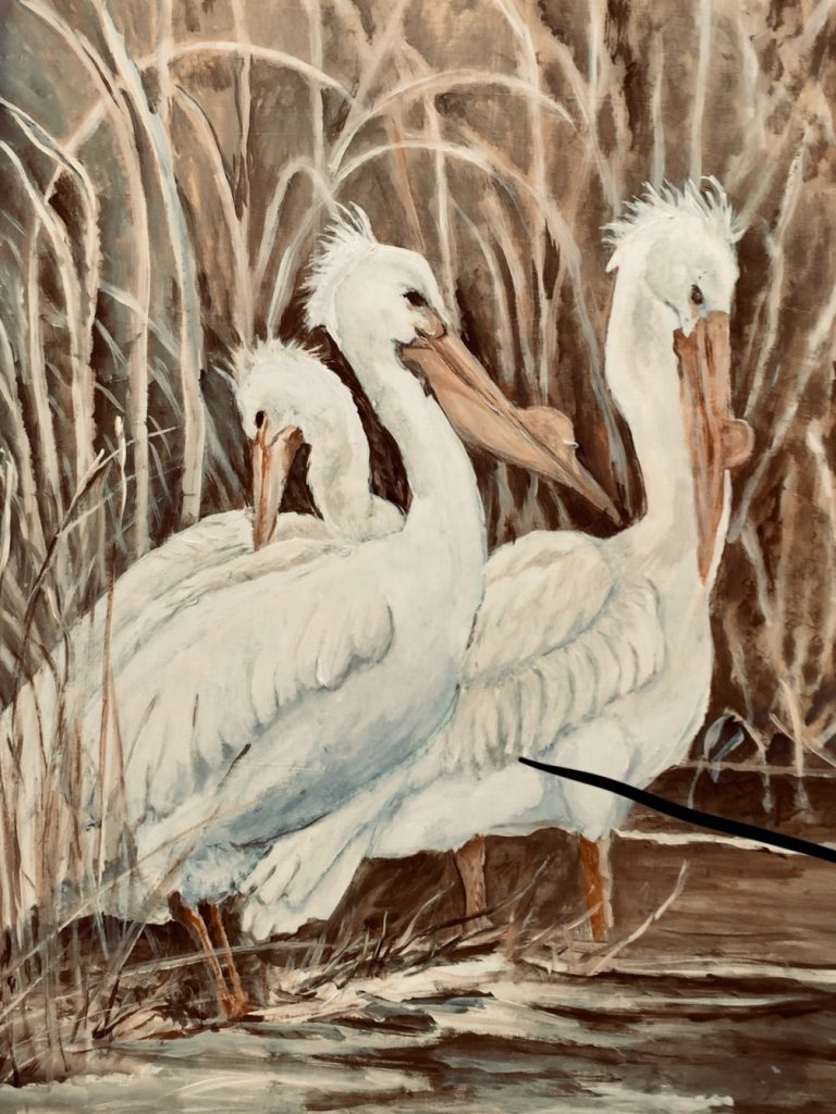 "Nancy Beliveau, ""Pelican Trio"", acrylic on canvas, 37x 27"" (frame included), $350.	Pelicans are a favorite of mine. They are ungainly until you see them fly and dive."