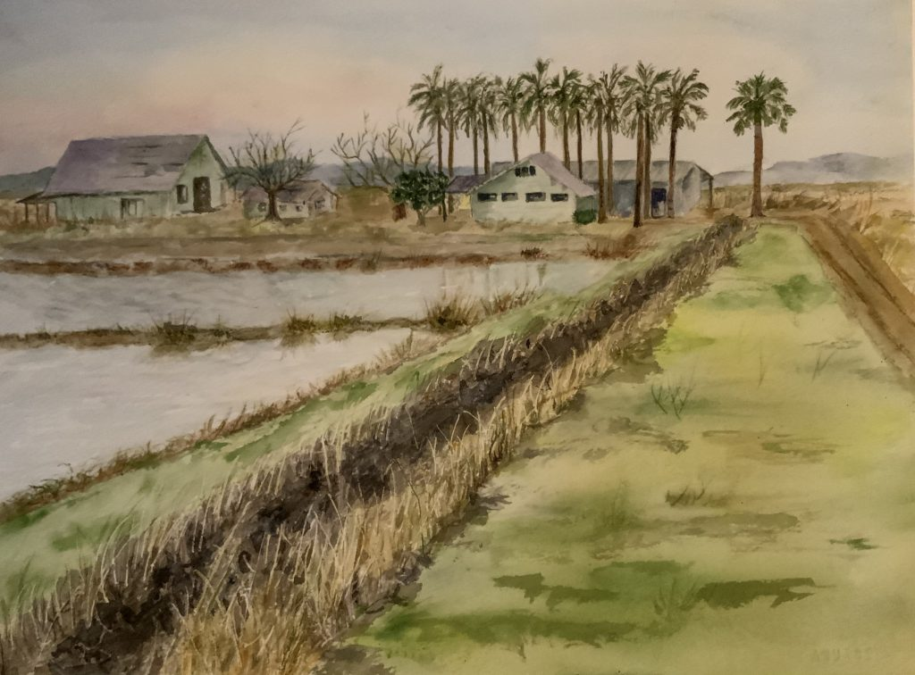 "April Richards-Senior, ""Simson Ranch"", Watercolor (giclee print), 11x 15"", $75.	This painting was begun during a private visit to the Simson Ranch to remember the lives of Burt and Marge Simson, who have now passed away, and who operated the dairy and rice farm partially shown in the painting. The artist has been a friend of several generations of the Simson Family. An attempt was made to show the remote beauty of the location and preserve memories of a proud farming family. The original is in the collection of a member of the Simson Family."