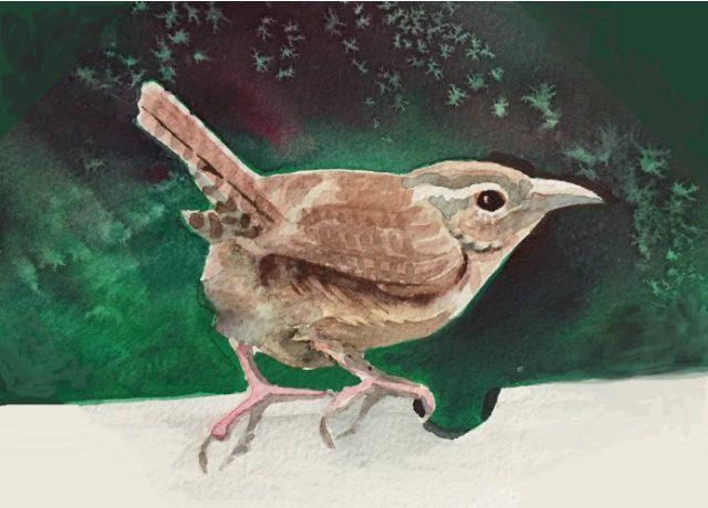 "Carol Prebil Miles, Bwick's Wren, 2015, watercolor, 8"" x 8"", $165 framed"