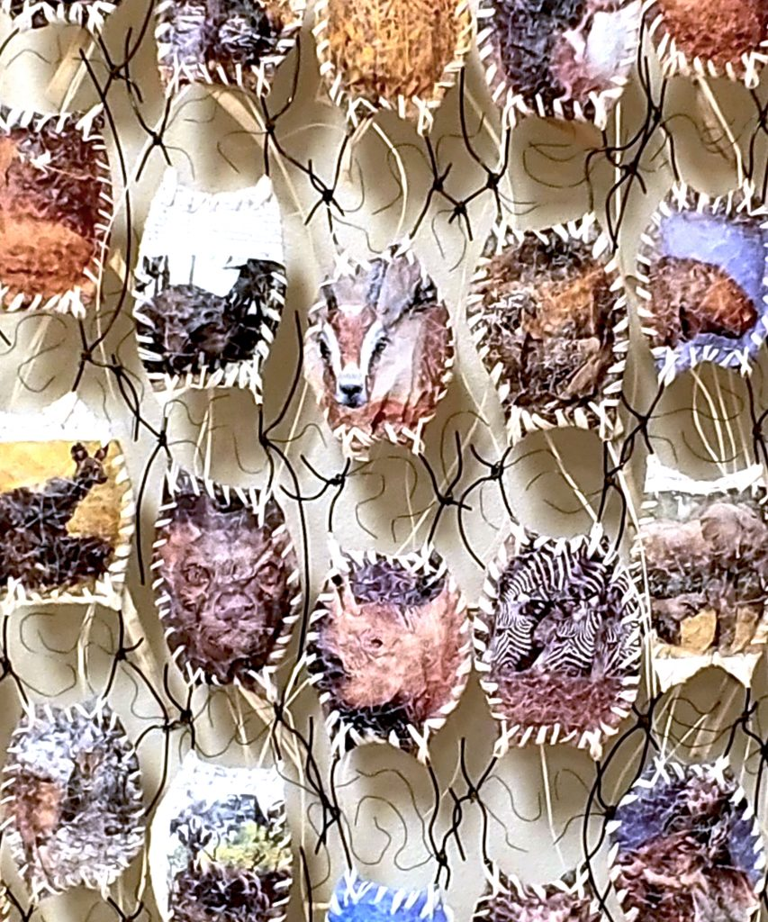 "Bonnie Kuhr, Endangered (detail), 2020, altered book, 5'H 2.5'W .5""D, NFS.  This piece was inspired by the book ""Endangered Species"" and was made into an altered book art. The images from the book are of the endangered species from the African continent. The back side shows the region they are from. The design or shape was fashioned after the skate or mermaid purse. The skate symbolizes that there is an embryo and the hope that the species will continue."