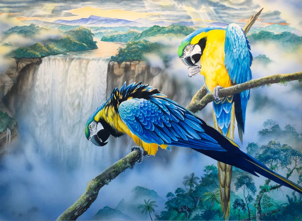 "Nicolai Larsen, Blue & Gold Macaws, 1983, Watercolor, 21.5"" x 29.5"", $5000"