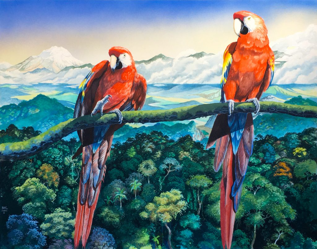 "Nicolai Larsen, Scarlet Macaws, 1982, Watercolor, 22.5"" x 28.5"", $5000, 16 x 20 inch archival print on rag paper, $150."