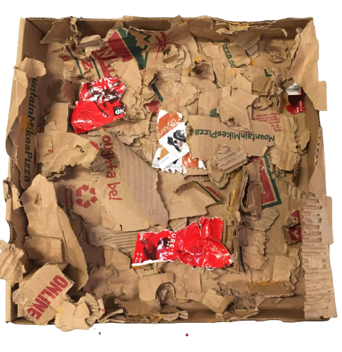 """""""Jed Shred"""" - Destroyed Box, Paper by Jed (boxer/canine) assembled by Kara Bayma"""