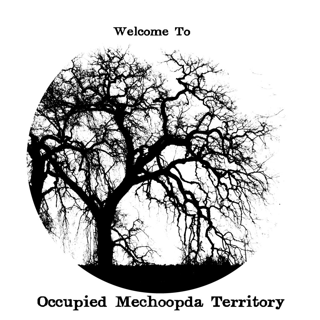 welcomemechoopda copy