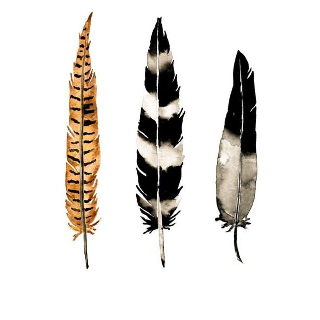 100950_earth-feather-art-prints_0