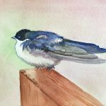 "Carol Prebil Miles, Idaho Tree Swallow, 2019, watercolor, 8"" x 7"", $165, Framed"