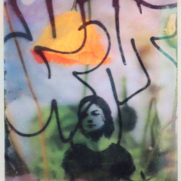 """Pennie Baxter, """"Go Ask Alice"""", 2021, Original photographs printed on two layers of textured glass, 13x15 inches"""